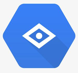 Google Vision Connector Integration